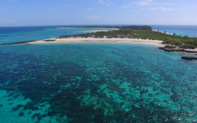Santa Carolina (Paradise Island)