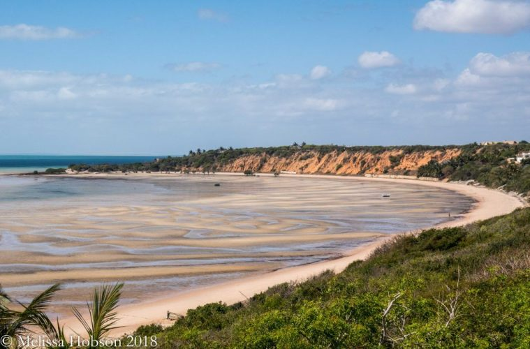 Top Adventures You Can't Miss on Your Mozambique Trip!